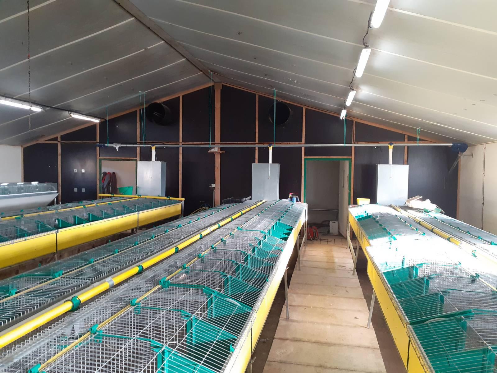 Cages à lapins - maternité