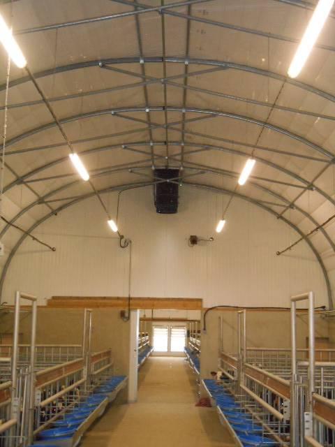 Salle de veaux - éclairage - ventilation